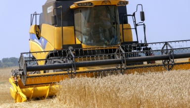Kharkiv region Ukraine - July 29 2016: Combine harvests wheat on a field in Kharkiv region Ukraine on July 29 2016