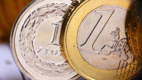zloty euro emerging europe