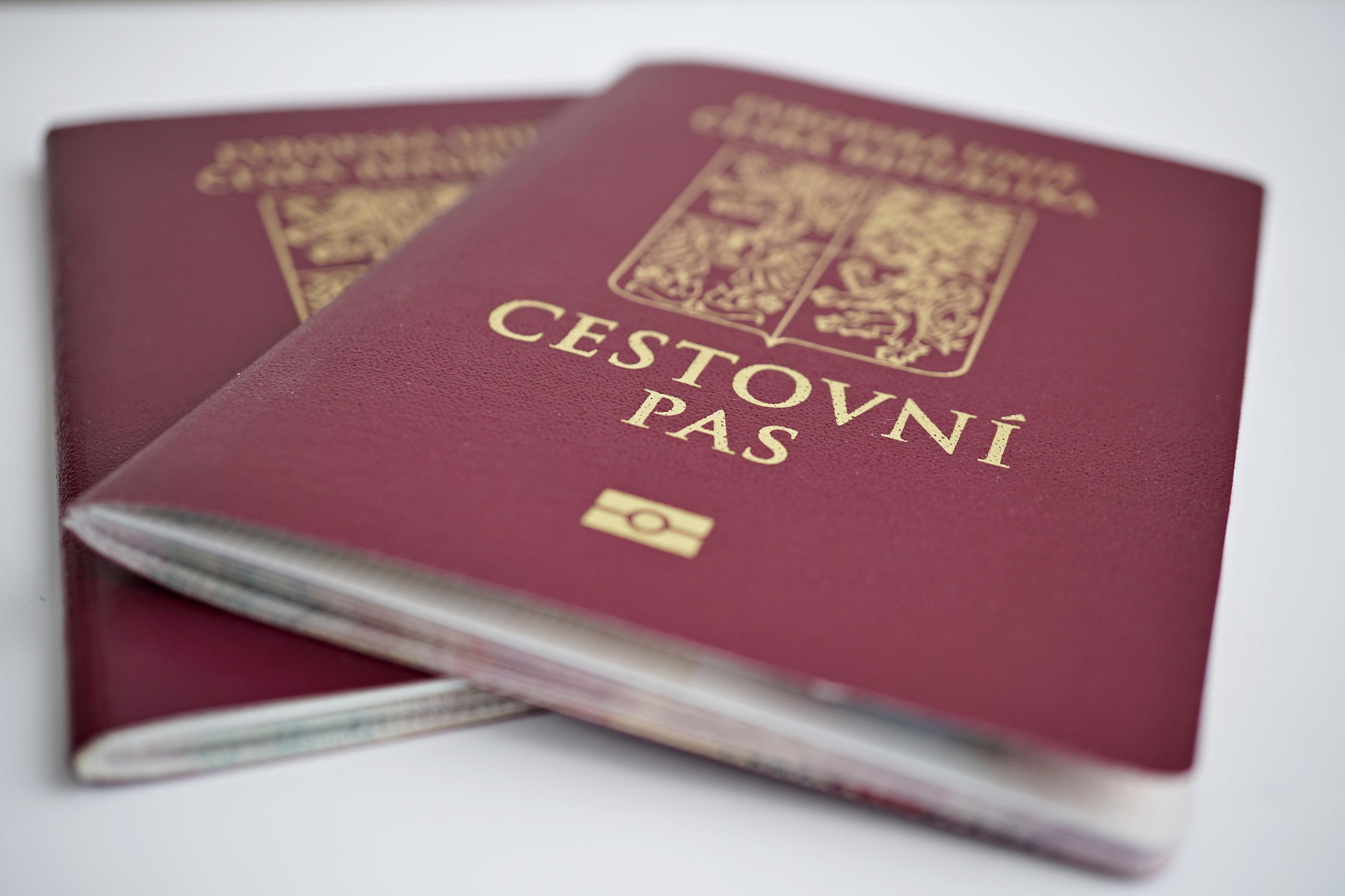 Passport Photo Requirements - OnTheGoSoft]