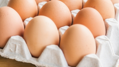 eggs in rack