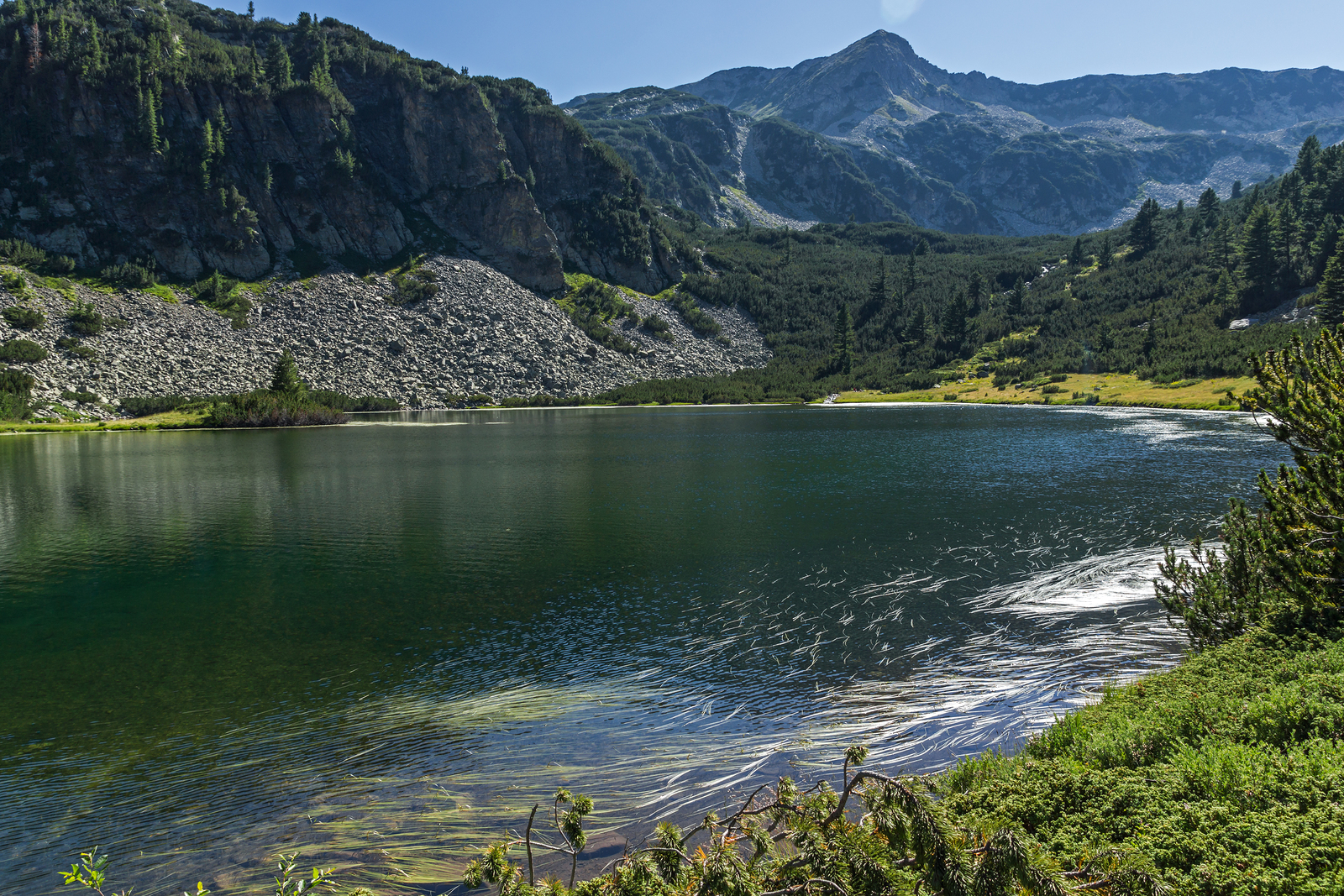 Bulgaria's Pirin National Park saved from destruction, for now