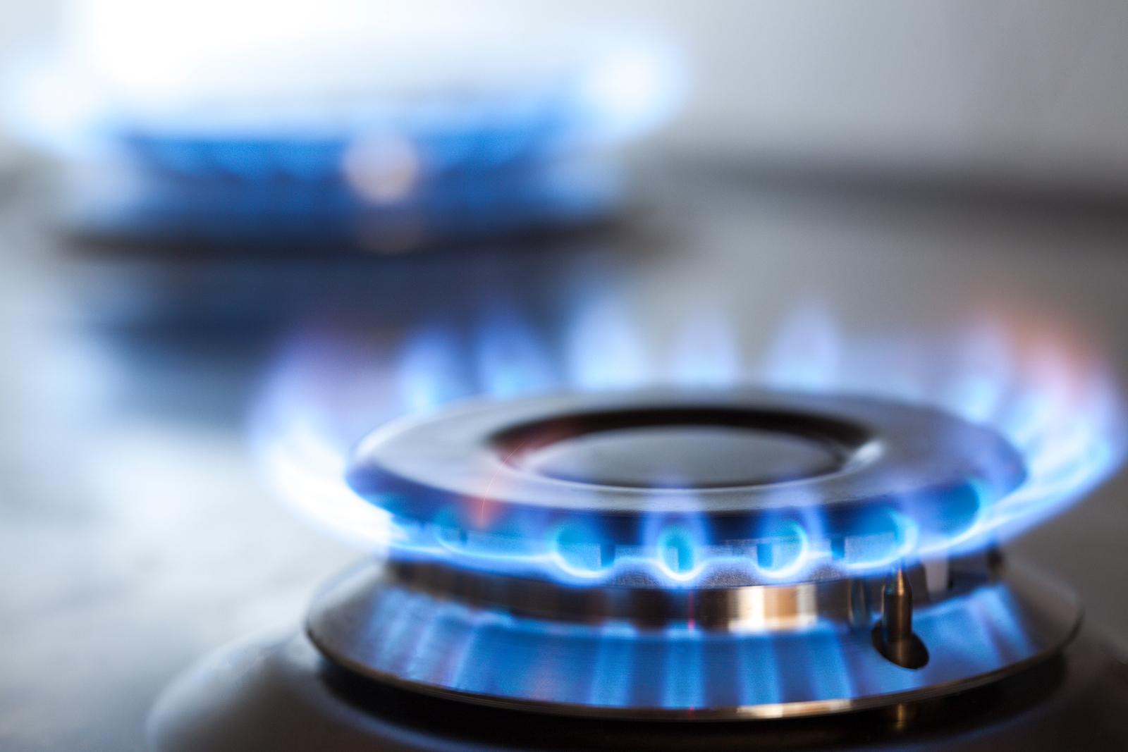 EU-Gericht beschränkt russischen Zugang zur Opal-Pipeline - Emerging Europe | News, Intelligence, Community