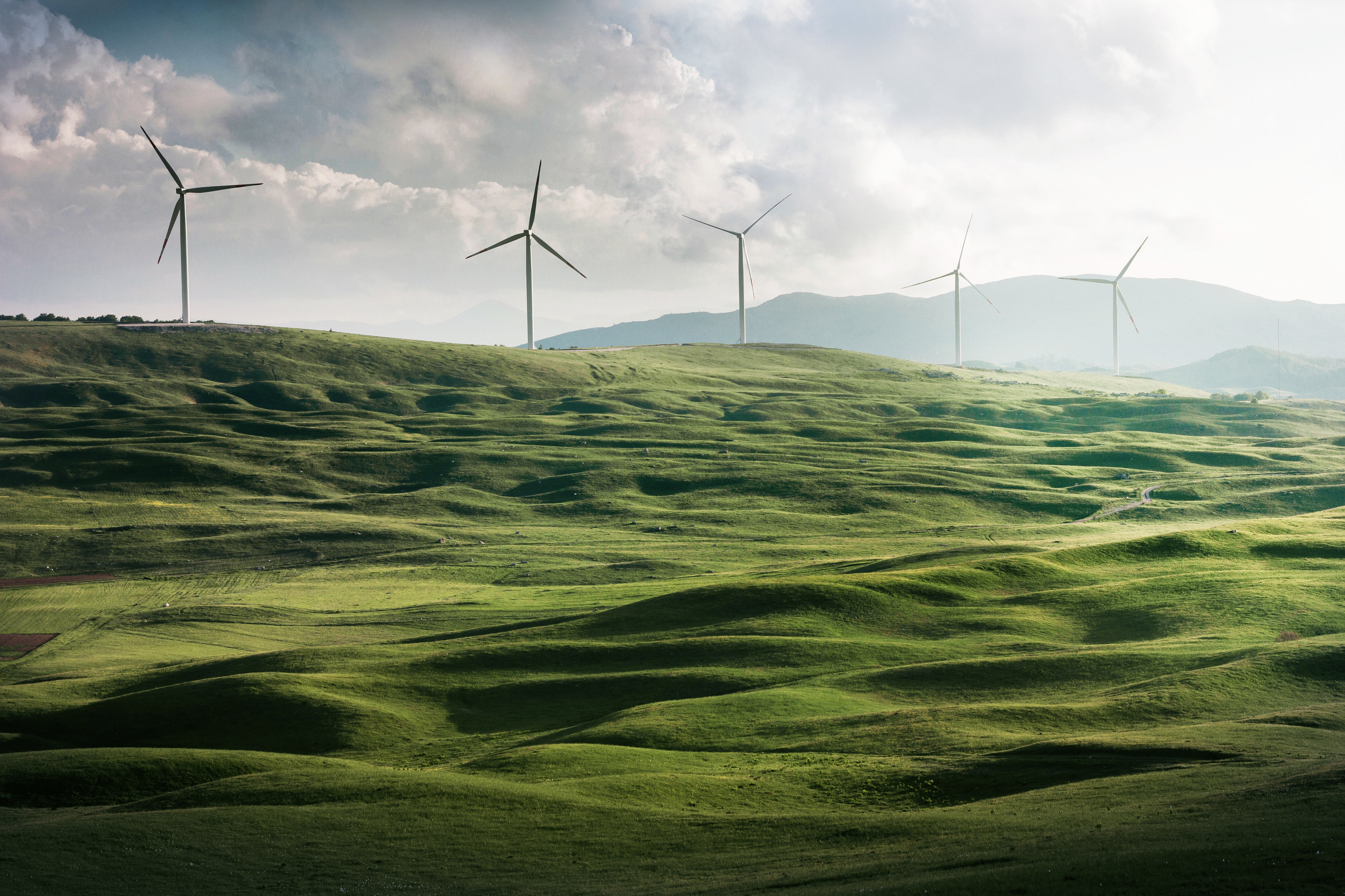 New report claims energy transition challenged by economic inequality