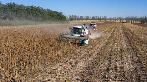 moldova agriculture