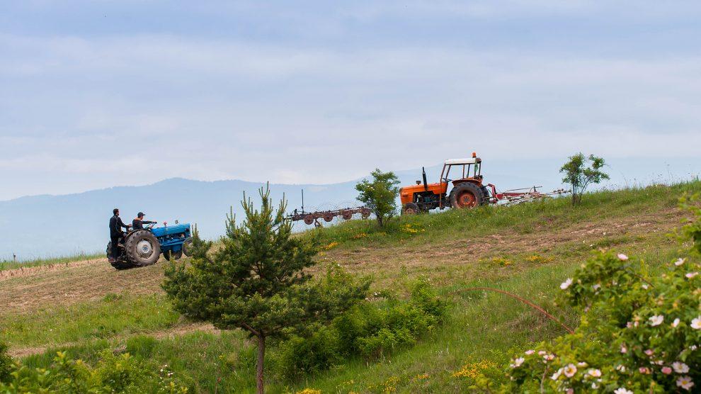 romania farmers
